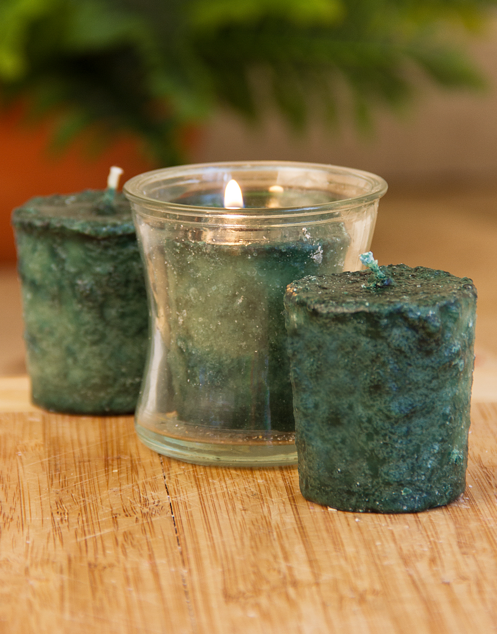 Eucalyptus 3 Pack Votive Candles