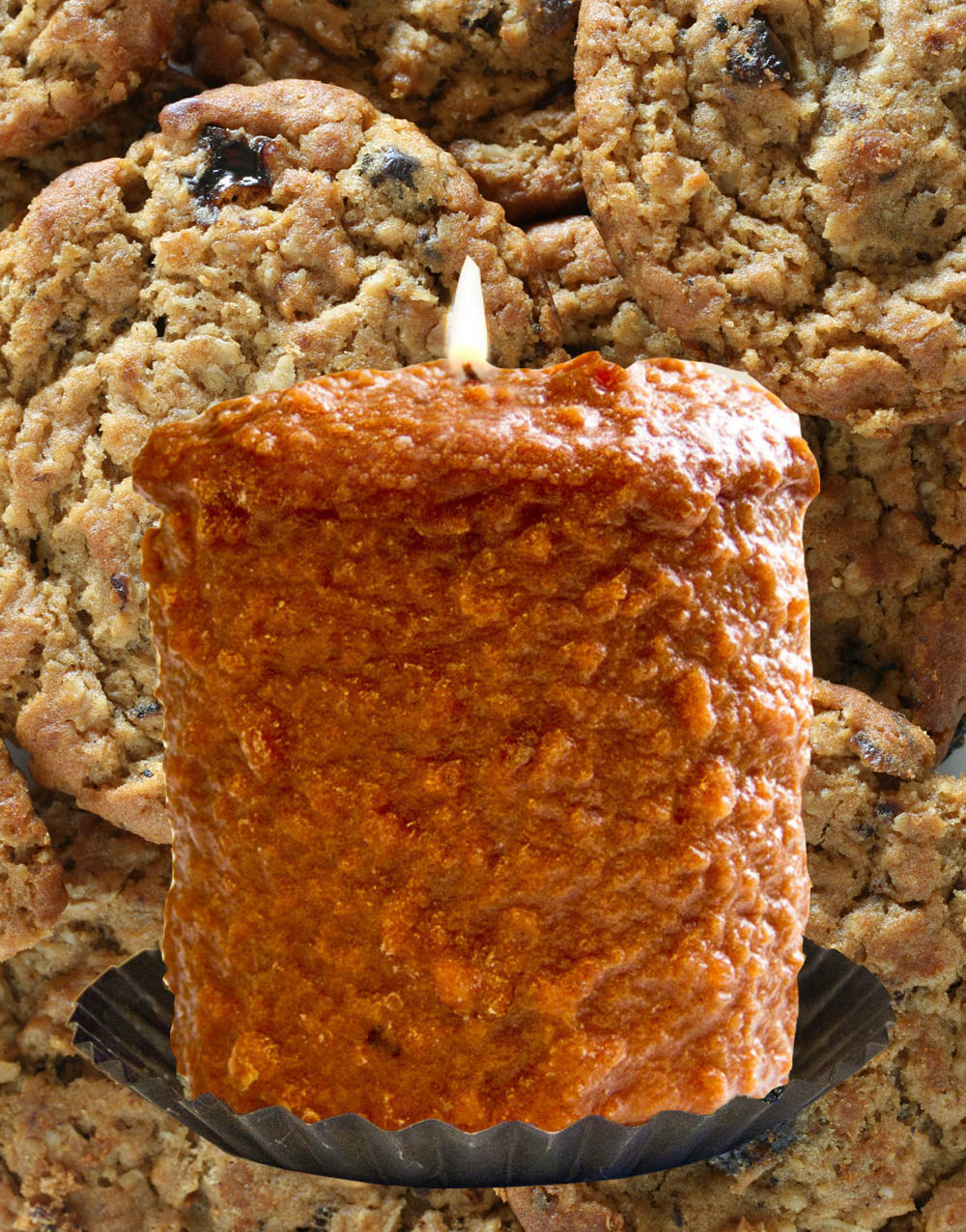 Oatmeal Raisin Cookie Hearth Candle