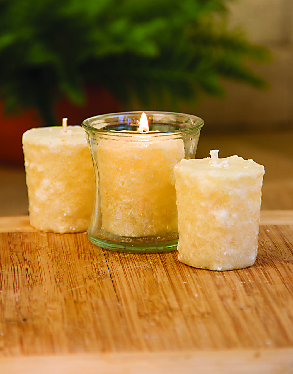 Sugar Maple 3 Pack Votive Candles