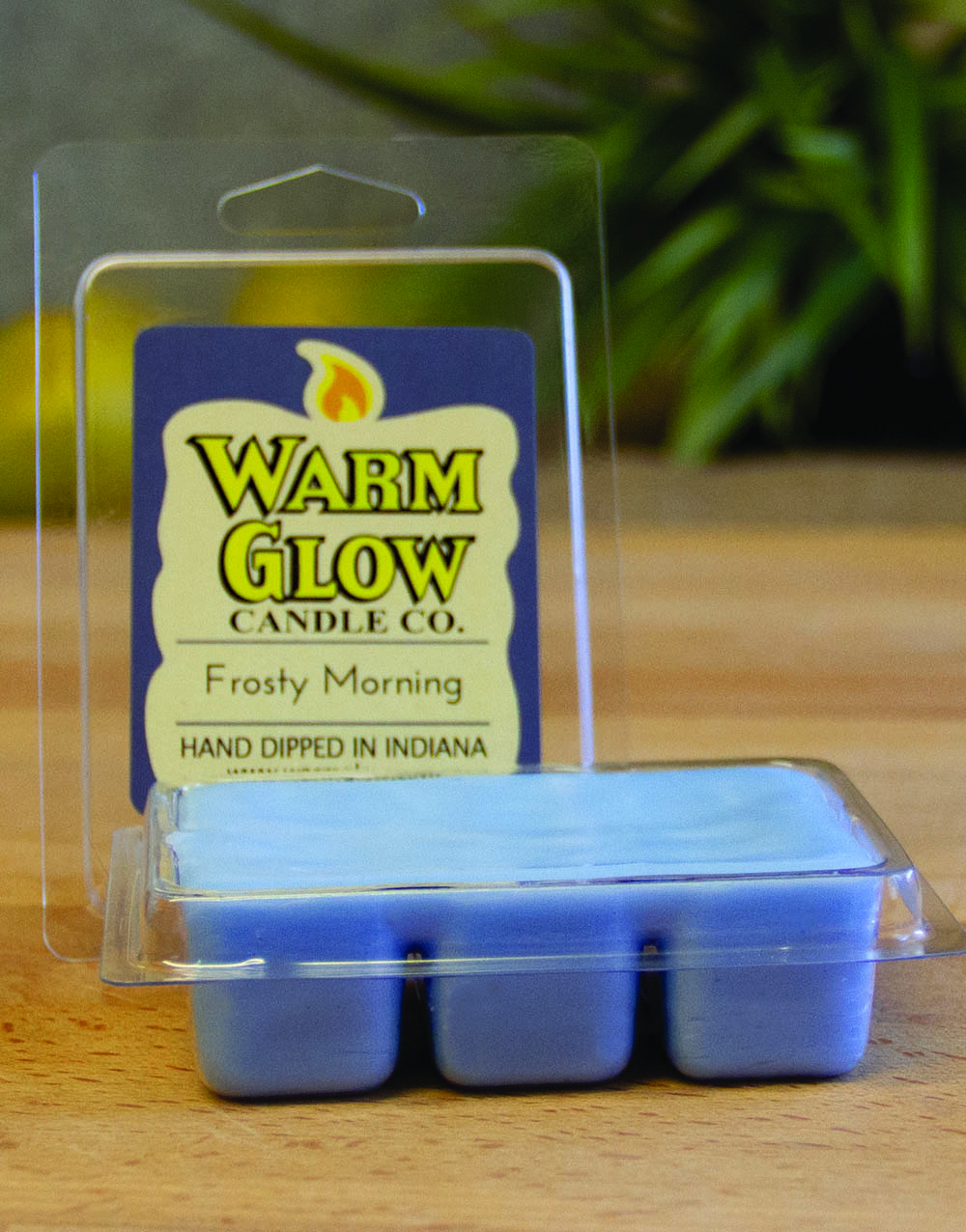 Frosty Morning wax melts