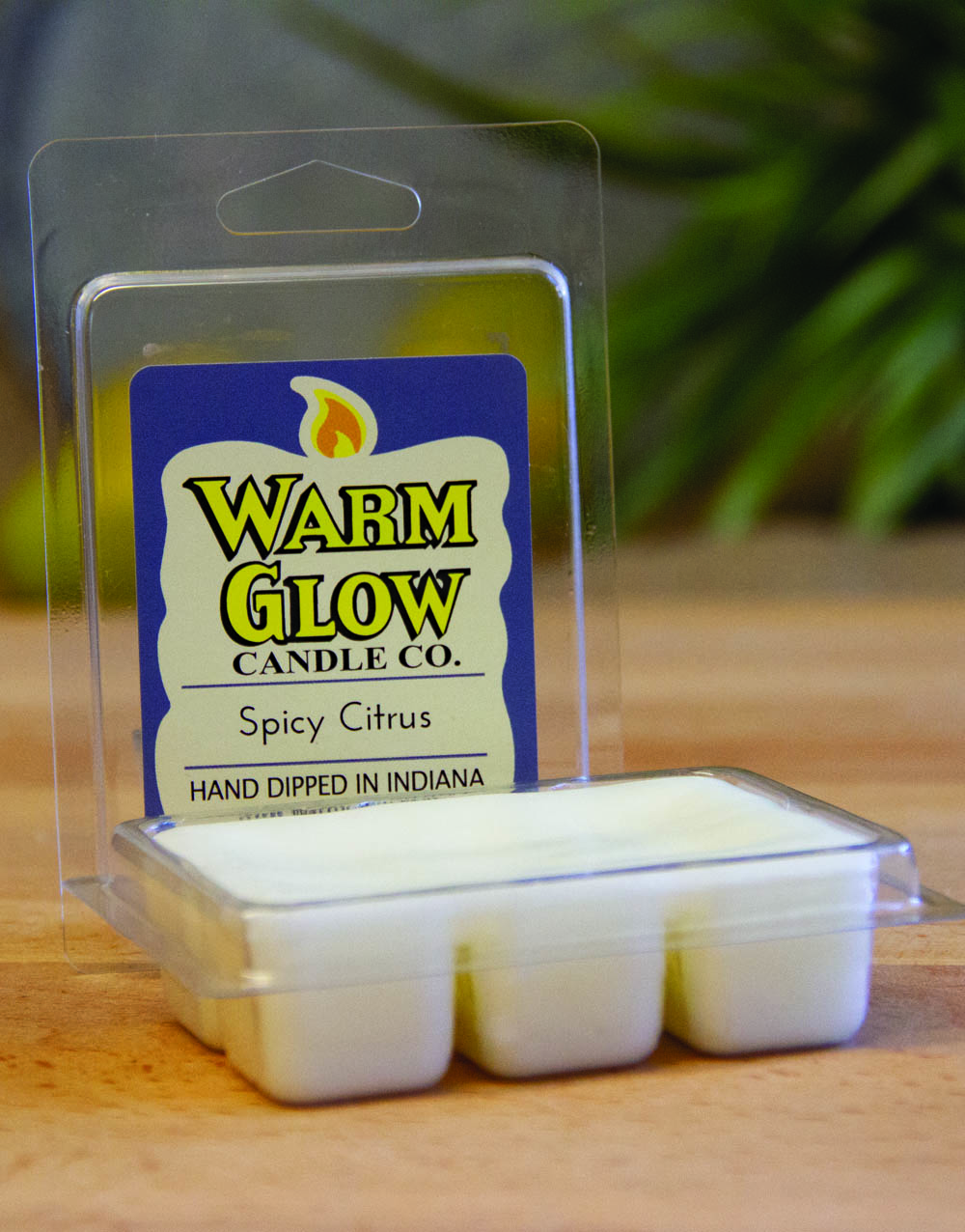 Spicy Citrus Scented Melt