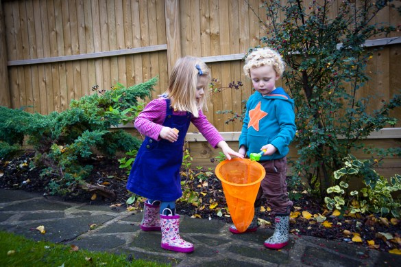 Twins picking berries with orange net. Photographed at home by Anna Hindocha/Warm Glow Photo