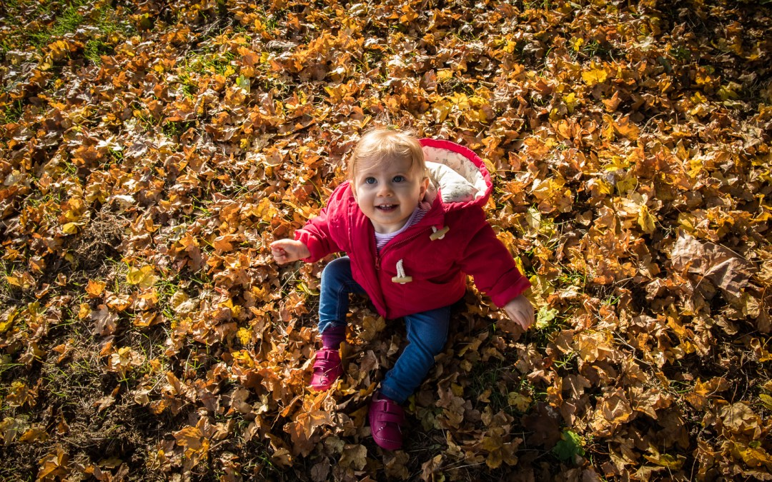Toddler girl sat in autumn leaves in Brockwell Park. Photographed by Anna Hindocha/Warm Glow Photo