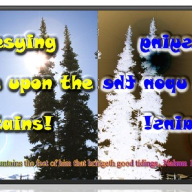 Prophesying Peace Upon the Mountains article image