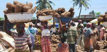 village-women-carrying-stuff-on-heads