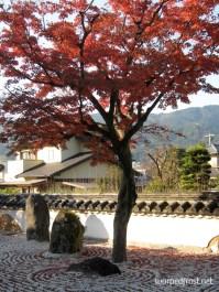 Kōmyōzenji fills up every fall with crowds admiring the blazing foliage (November 2010)