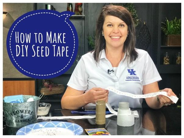 Seed tape5