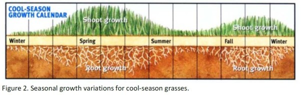 Seasonal growth