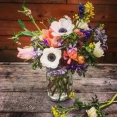 Blooms from Black Rooster Farm in Ball/Mason Jar