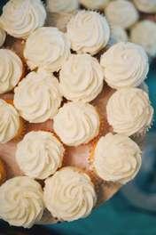 Vanilla cupcakes on display