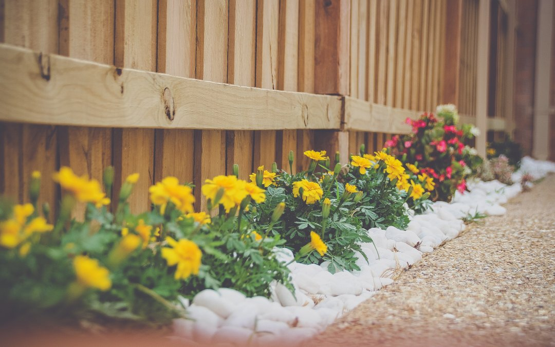 Why you should get your garden landscaped in the summer?