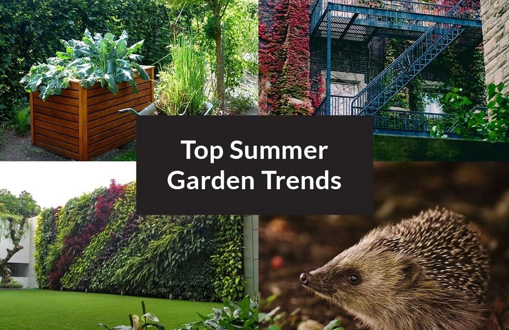 Top Summer Garden Trends