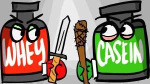 casein protein vs whey protein