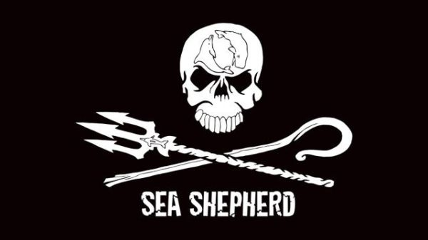 Two First Nations say Sea Shepherd 'not welcome' | Warrior ...