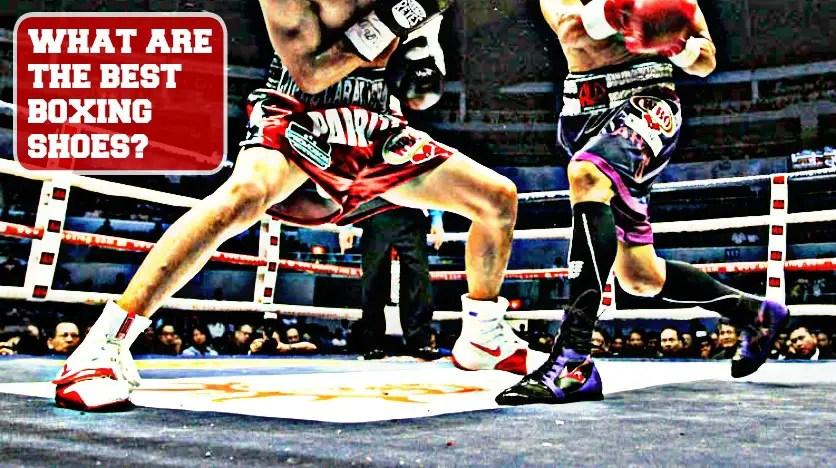 asics boxer