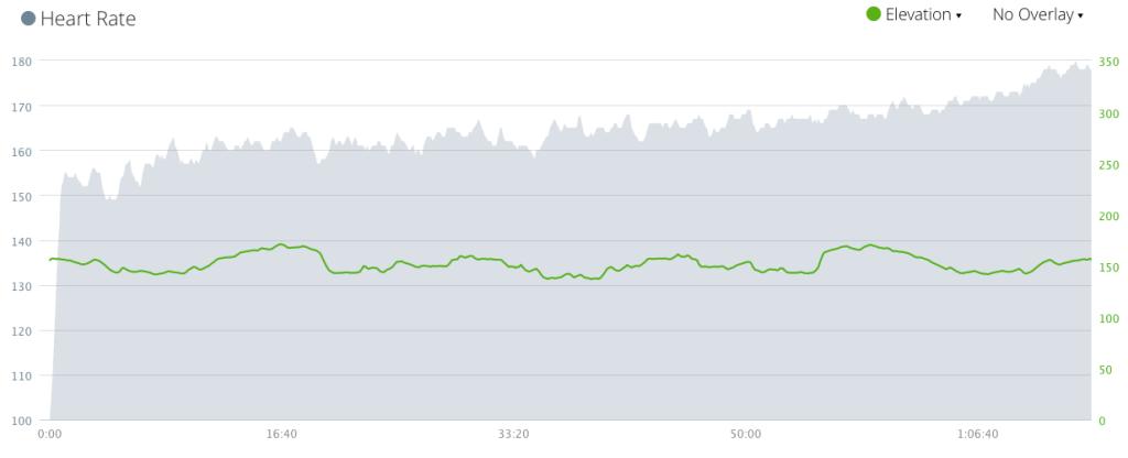 21 km, średni puls 164