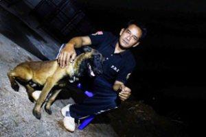 Iyus Pelatitih Anjing