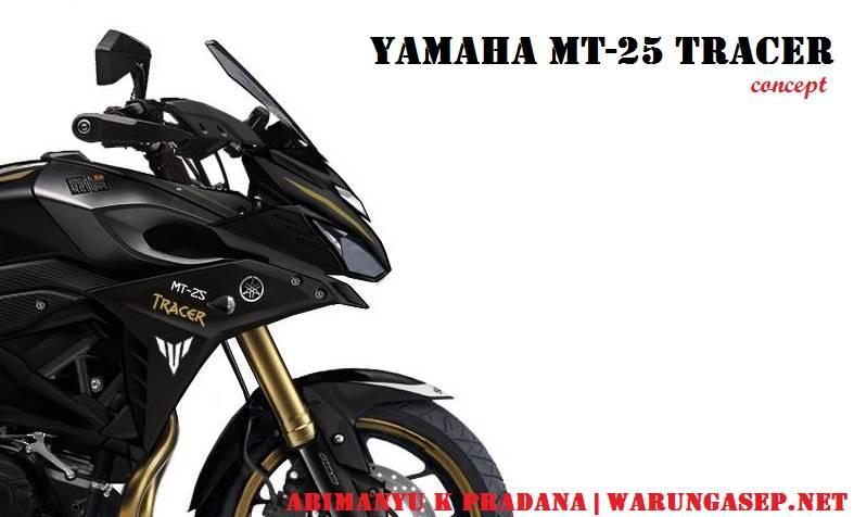 Kawasaki Versys X 250 And Yamaha Mt 25 Sports Plus St