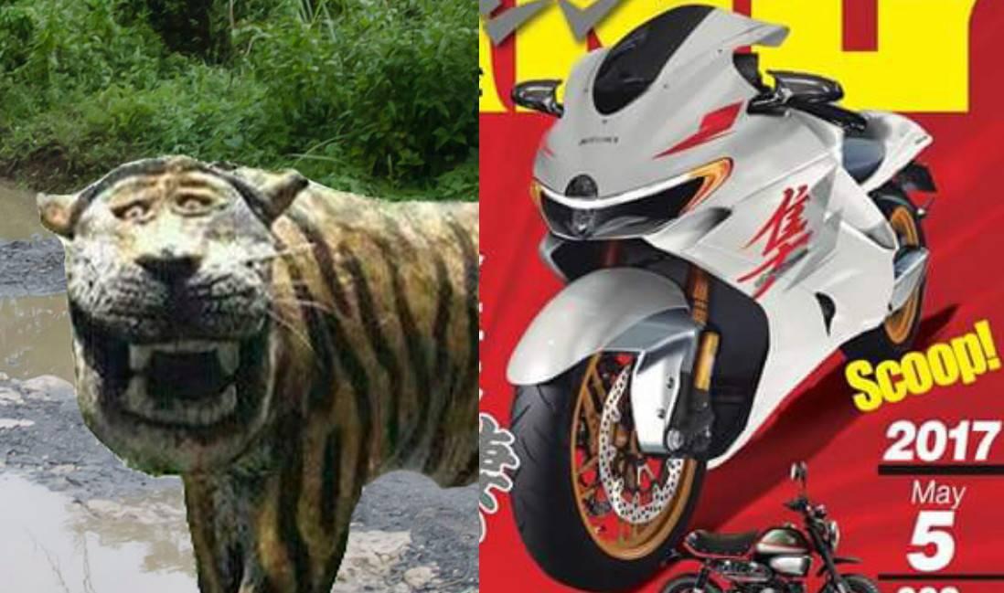 Renderan New Hayabusa Facelift ala YoungMachine, Kok Mirip Macan Cisewu?