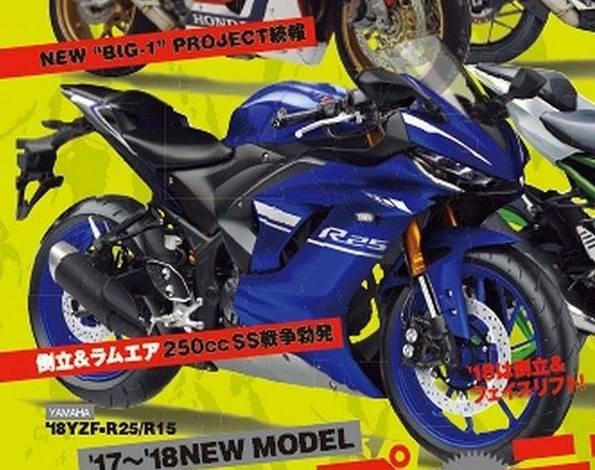 r25 facelift 11