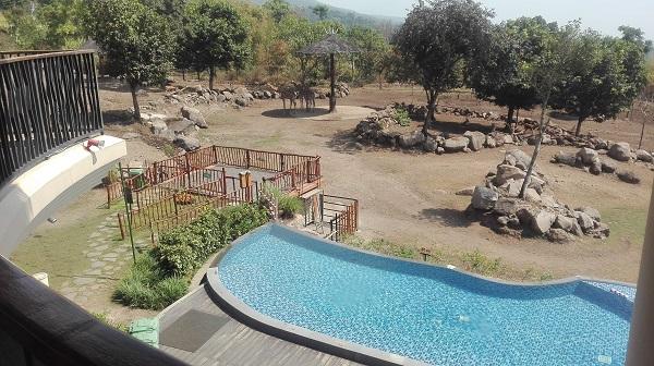 baobab safari resort,taman safari indonesia,taman safari prigen,taman safari indonesia 2,baobab resort pasuruan