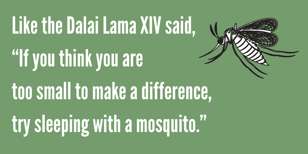 "Dalai Lama quote ""If you think you are too small to make a difference, try sleeping with a mosquito."""