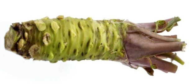 Sawa Wasabi rhizome - trimmed, cleaned and ready for grating.
