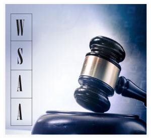 WASB Logo Image