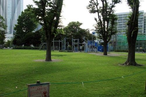 マンションの隣には小さな公園があり、子供たちが元気に遊ぶ姿も