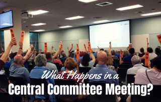 voting during a central committee meeting