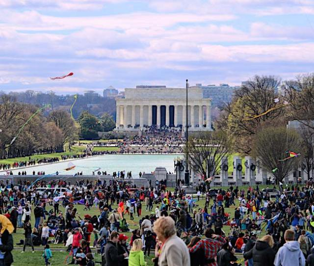National Mall During The National Cherry Blossom Festival Kite Festival Top Reasons To Visit Washington