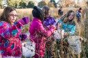 girls with buckets collecting seeds