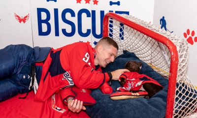 The Capitals have a new team dog named Biscuit.