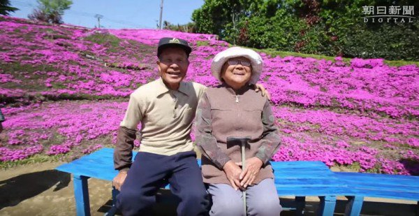 Caring Husband Creates Giant Scented Flower Garden to Make His Blind Wife Smile Again 2