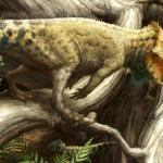 New dinosaur species discovered in USA