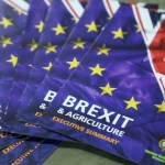 Britain prepare historic Brexit vote