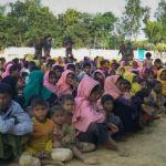 Myanmar says no evidence of Rohingya genocide