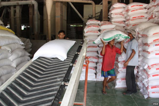 Vietnam rice industry faces threat from climate change, Mekong dams workers