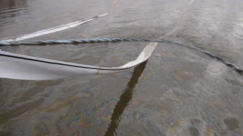 Virginia Dominion has accepted responsibility for a mineral oil spill into the Potomac River that occurred in January.