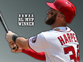 Washington Nationals' Bryce Harper /Photo: mob.com
