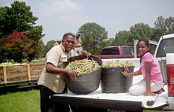 A Black farmer in Mississippi (Courtesy of the Federation of Southern Cooperatives)