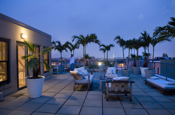 Potted palms and teak furniture fill the rooftop terrace with a view of the Washington Monument.