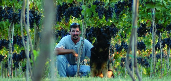 Ben Renshaw, owner of Loudoun County's newest vineyard, 8 Chains North. (Photo by connie Mannix)