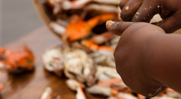 The Hyatt Chesapeake's upcoming Crab Week from August 15-29 features food, activities and fun. Photo courtesy the Hyatt Chesapeake.