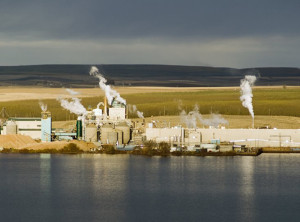 Boise Cascade's Wallula mill: Pulp and paper industry would be sharply affected.