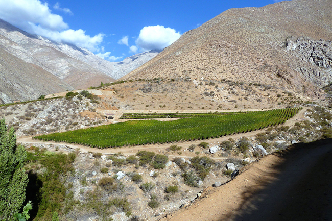 The Narrow Road to Quality in Chile's Far North