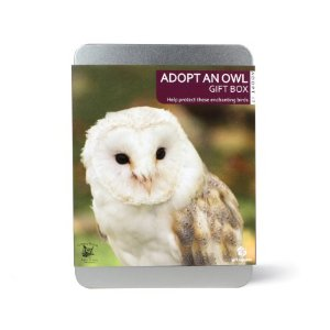Gift Republic Adopt It Adopt An Owl Turbary Woods Sanctuary
