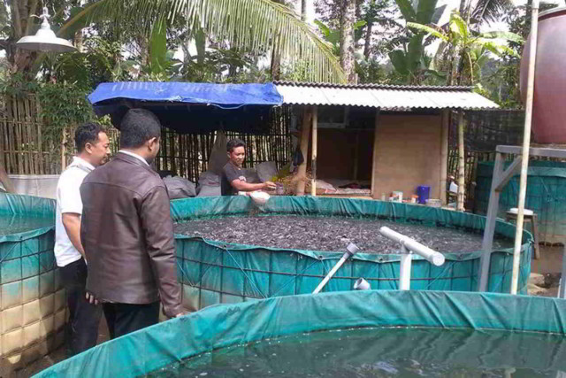 Unduh 7600 Koleksi Gambar Terpal Ikan Lele HD Gratis