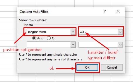 cara filter grouping dan validasi data di excel