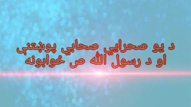 Photo of د یو صحرايي صحابي پوښتنې او د رسول الله ص ځوابونه
